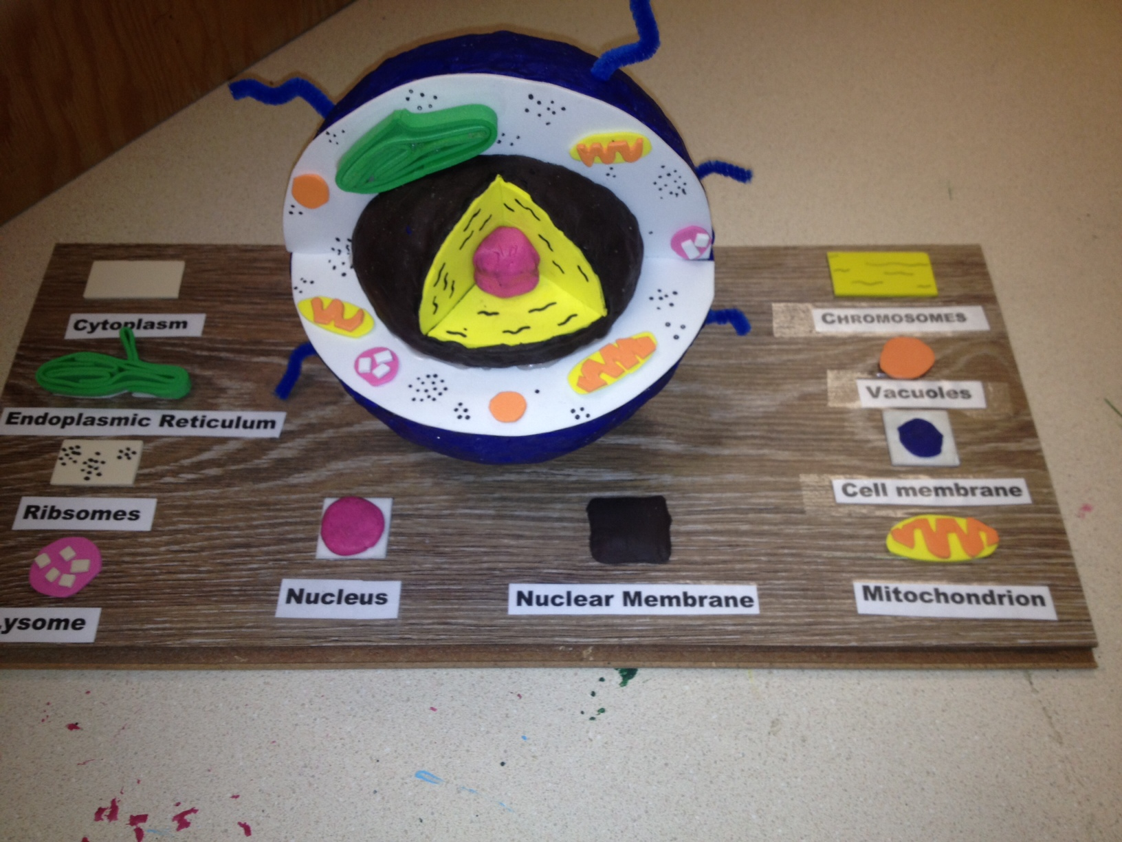 3D Animal Cell Project Ideas http://msrosenreads.com/2011/11/01/read-to-create/